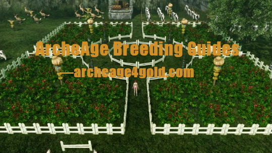 Archeage Breeding